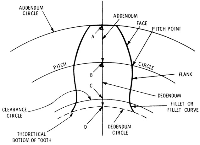 Diagram Diagram Of A Theoretical Gear Tooth