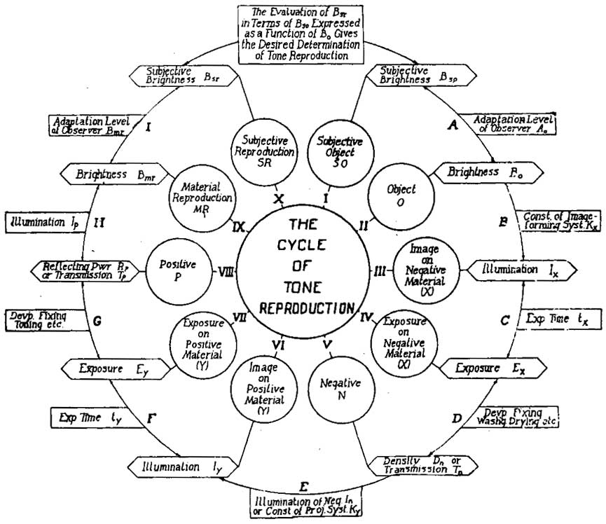 Diagram Schematic Diagram Of The Cycle Of Tone Reproduction